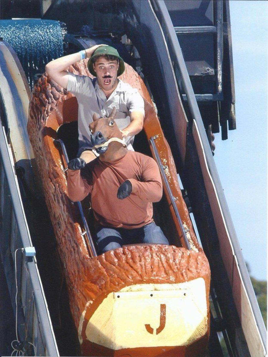 funny roller coaster photos horse