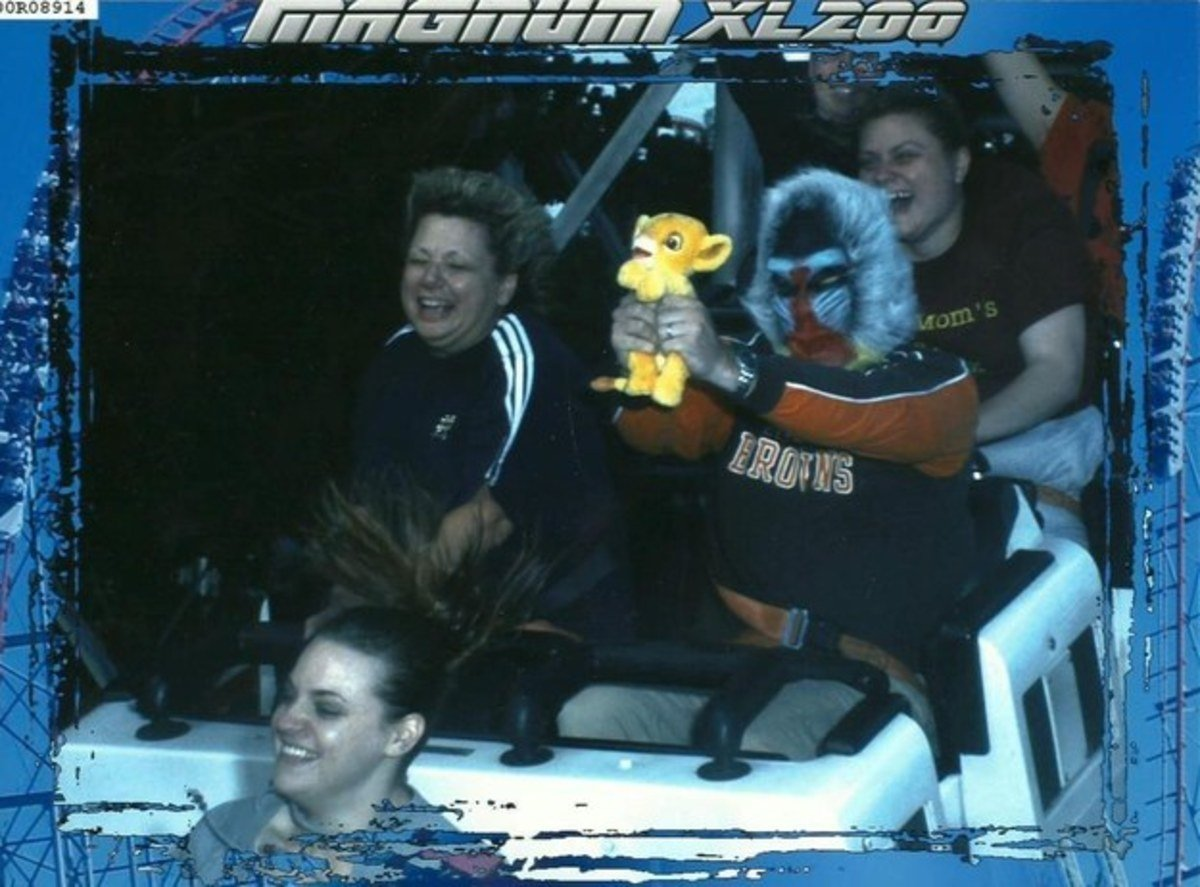 funny roller coaster photos lion king