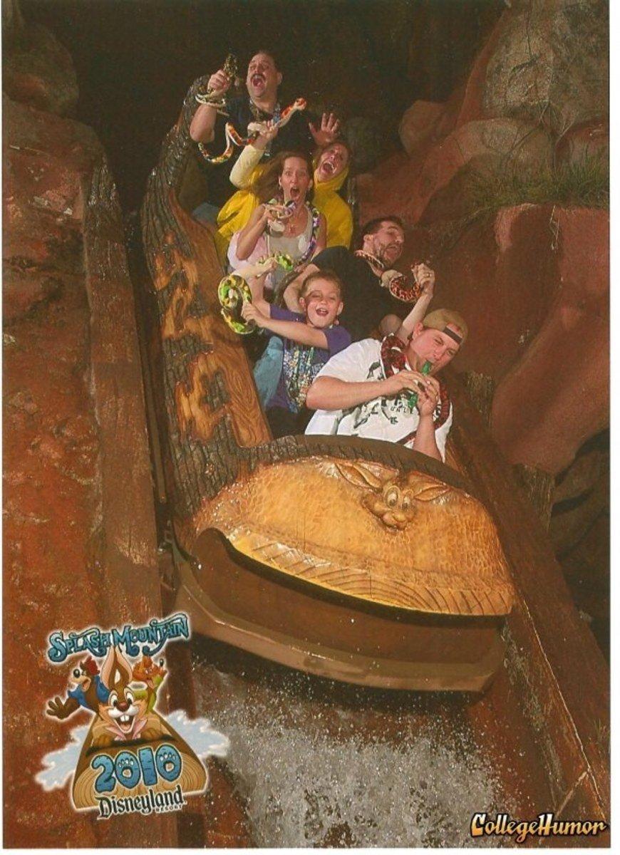 funny roller coaster photos splash mountain