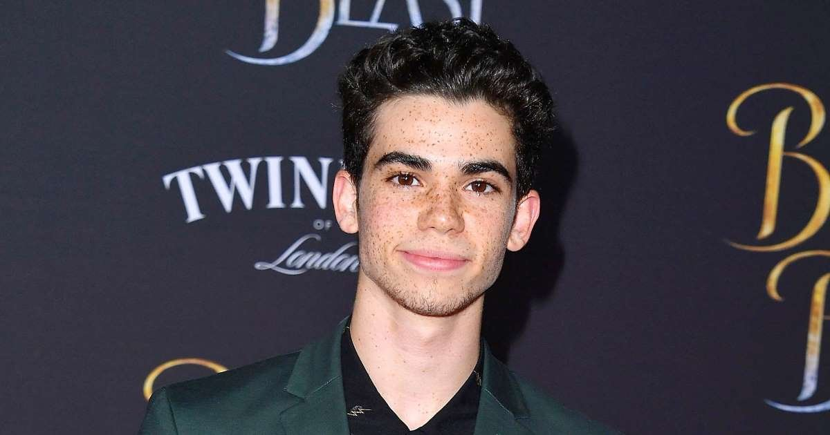 a 14.jpg?resize=412,232 - Disney Star Cameron Boyce's Family Revealed He Passed Of An Epileptic Seizure