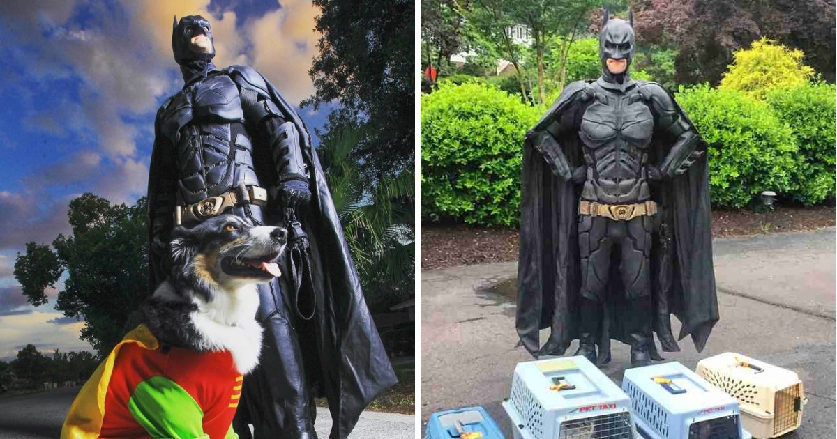 batman6.png?resize=412,232 - Man Dresses As A Superhero While Saving Shelter Animals From Euthanasia