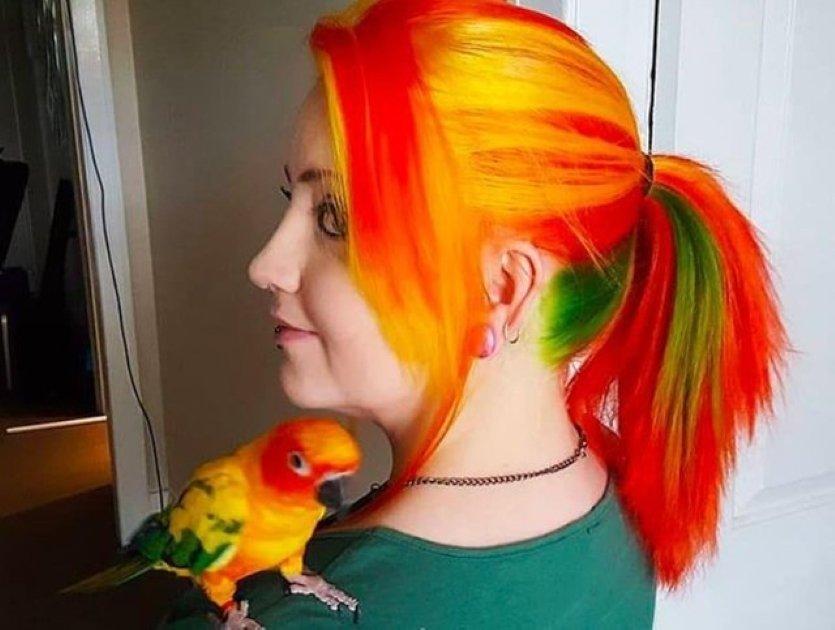 bird friend 1.jpeg?resize=412,275 - 15+ Of The Cutest Bird Friends Found On The Internet