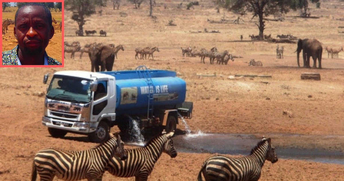 d5 9.png?resize=412,232 - A Generous Man Brings Loads of Water for the Animals Who are Suffering Because of Drought