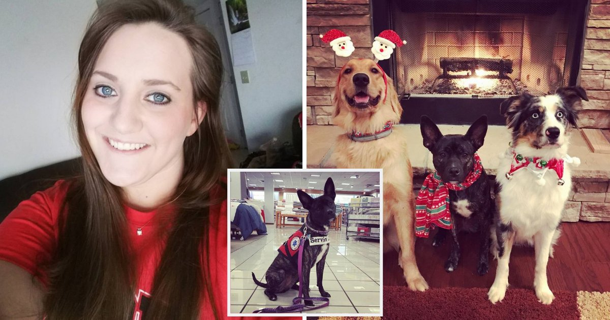 dog6.png?resize=412,232 - Woman Shares Powerful Message After Kids Hit Her Service Dog While Their Mother Just Stood By