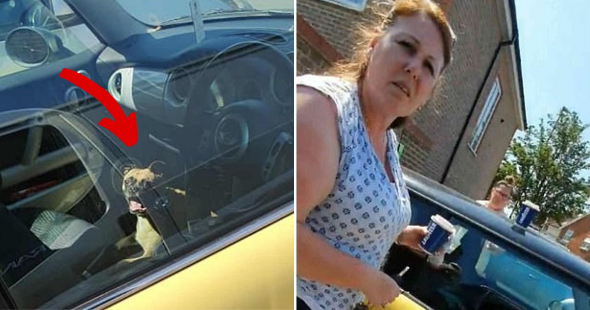 dogincar5.png?resize=1200,630 - Man Harshly Criticizes Woman For Leaving Dog In Her Car During The Hottest Day Of The Year