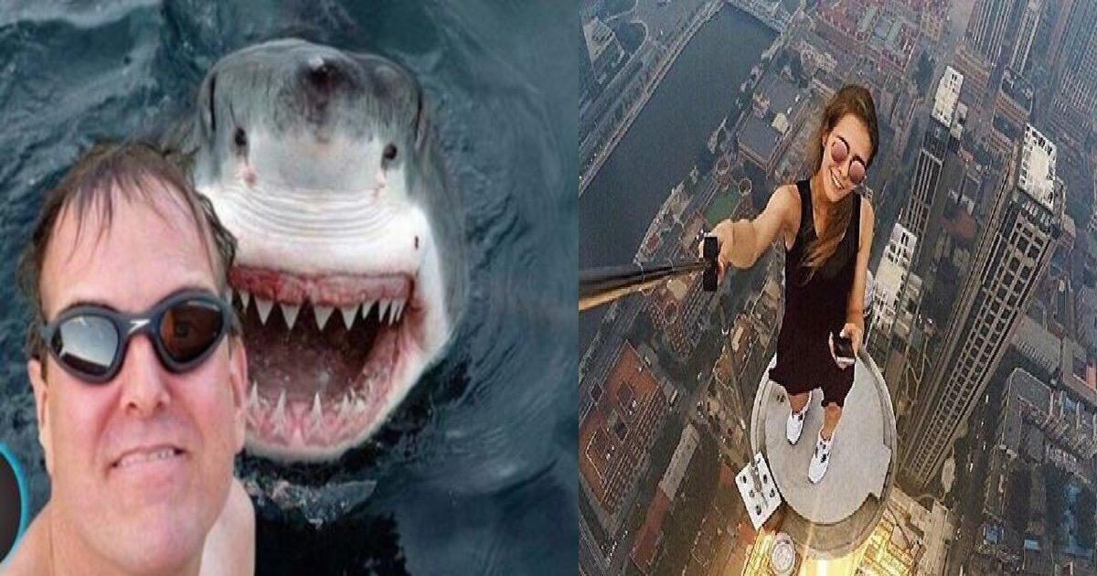 e696b0e8a68fe38395e3829ae383ade382b7e38299e382a7e382afe38388 43 1.png?resize=412,275 - 危険な自撮りによる◯亡率は、サメの襲撃による◯亡率の5倍!? その衝撃的な調査結果とは…