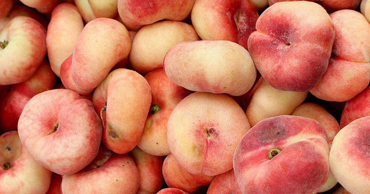 featured image 31.png?resize=412,232 - Donut Peaches Are Now Available And You Need To Try Them This Summer