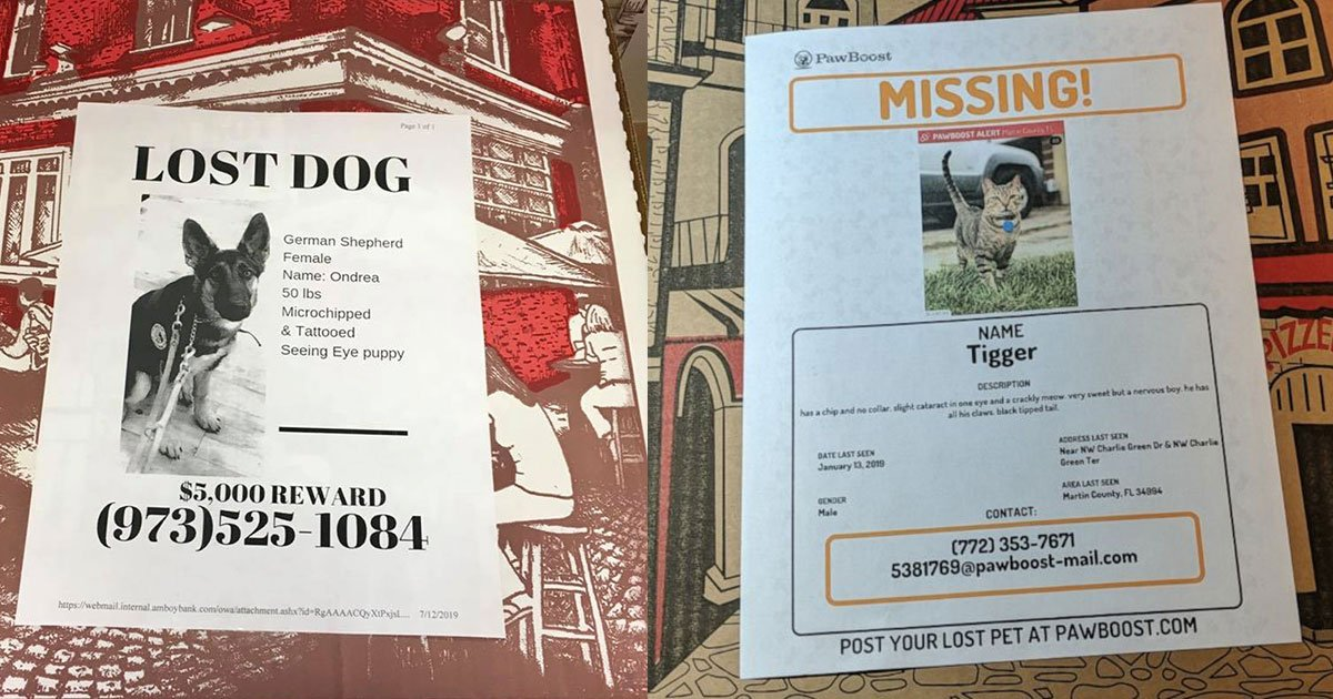 new jersey pizzeria putting flyers of missing pets on pizza boxes to help owners to find their lost pets.jpg?resize=412,232 - A Pizzeria Helps Owners Find Their Lost Pets By Putting Flyers Of Missing Pets On Their Pizza Boxes