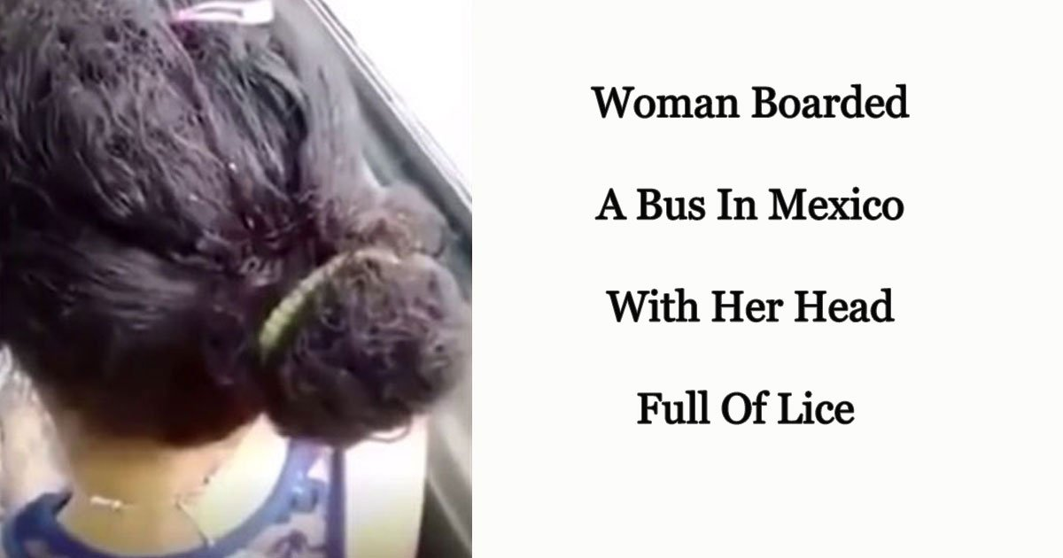 s 18.jpg?resize=412,275 - A Bus Passenger Shared A Video That Shows Lice Crawling On A Woman's Hair