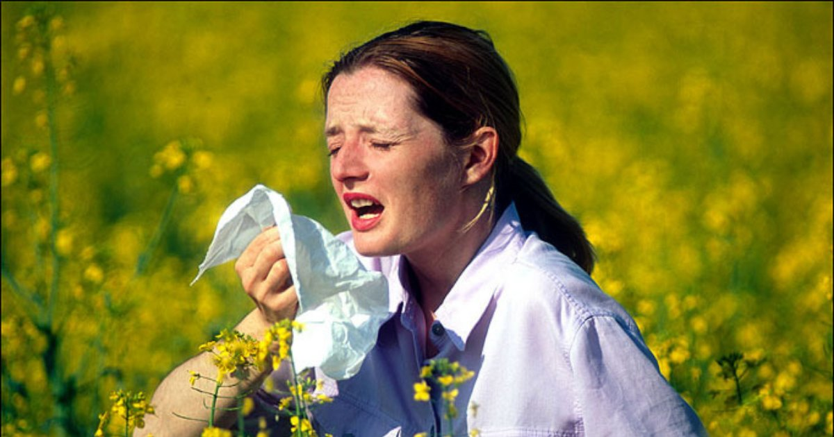 s4 19.png?resize=412,232 - High Risk of An Asthma Attack In the UK Because of Pollen Surge and High Heat