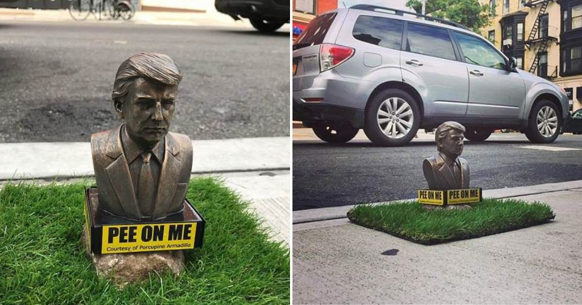 statue5.png?resize=412,232 - Tiny Statues Of President Trump With Signs Inviting Dogs To Pee On Them Have Appeared Across Brooklyn