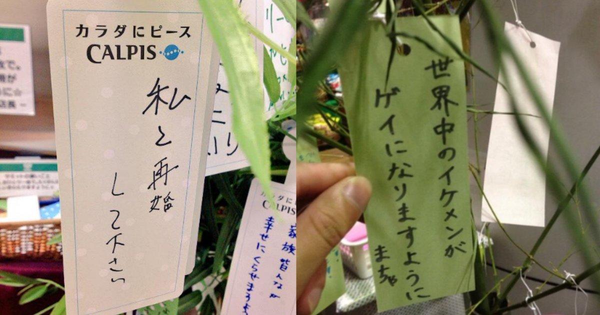 tanzaku2.png?resize=300,169 - あなたの願いごとは何?歴代七夕短冊おもしろ願い事まとめ!②
