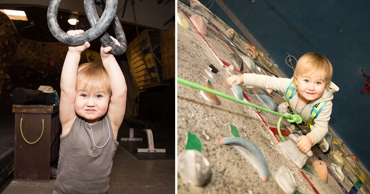 toddler climbs walls.jpg?resize=412,232 - This Toddler Is Winning The Internet As She Can Climb Walls As High As 30ft