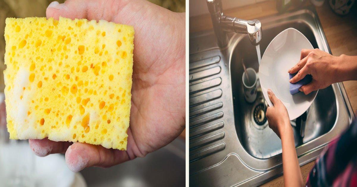 untitled 1 81.jpg?resize=412,232 - Voici comment nettoyer votre éponge de cuisine pour éviter la propagation des germes