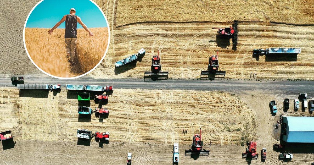 untitled design 63 2.png?resize=300,169 - 60 personnes ont offert un coup de main pour aider un agriculteur malade à faire sa récolte