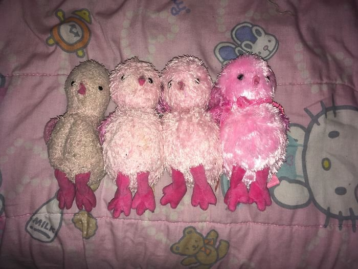 My Mom Bought The Same Stuffed Animal For My Sister In Case She Lost It. After 16 Years, We Found All Four Of Them