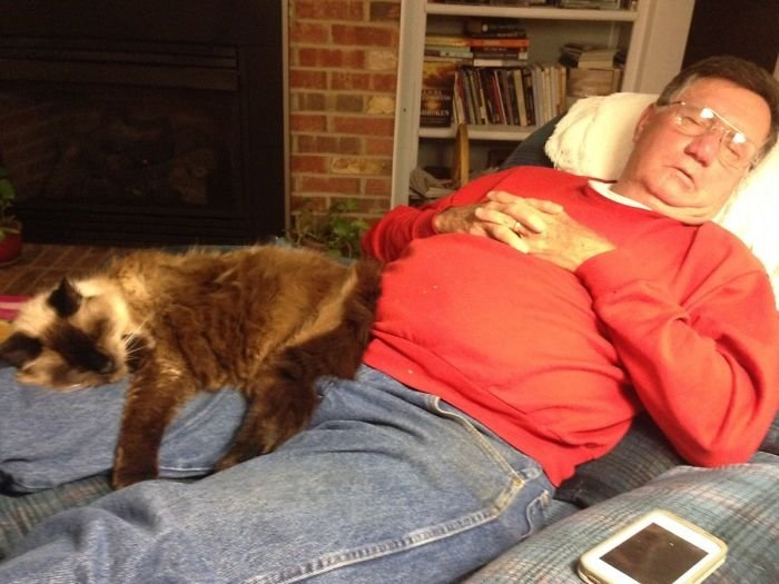 How My 20-Year-Old Cat And 70-Year-Old Father Spend Their Evenings