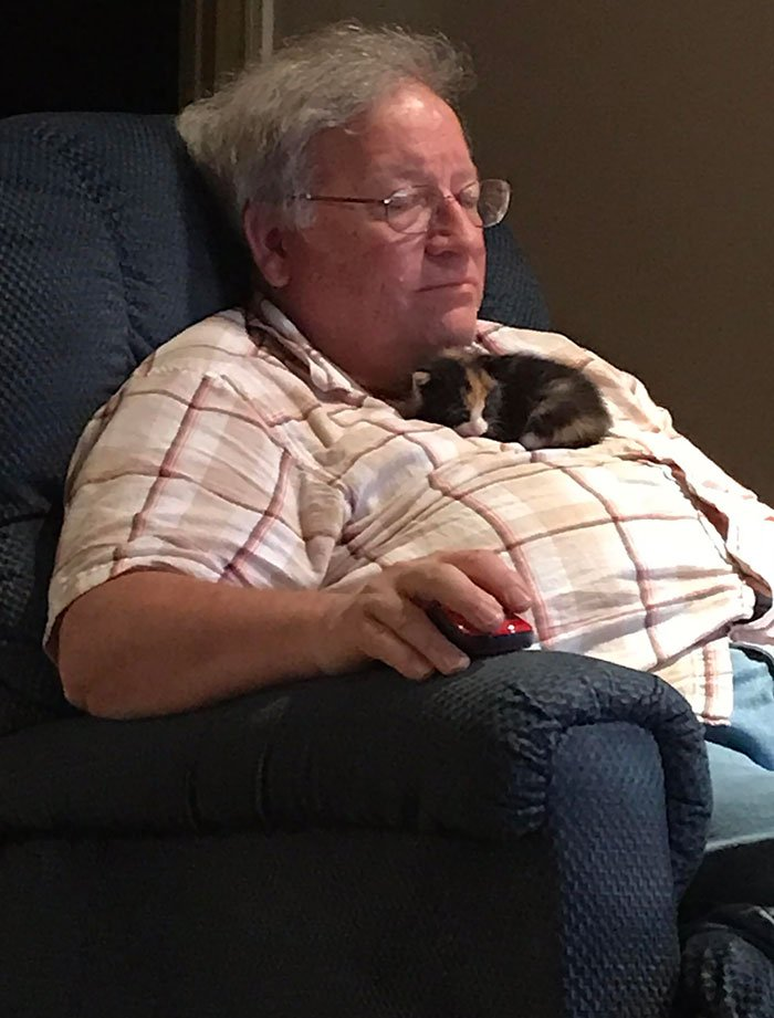 My Dad Found A Kitten Who Prefers Sleeping Like This Crying Outside A Couple Days Ago