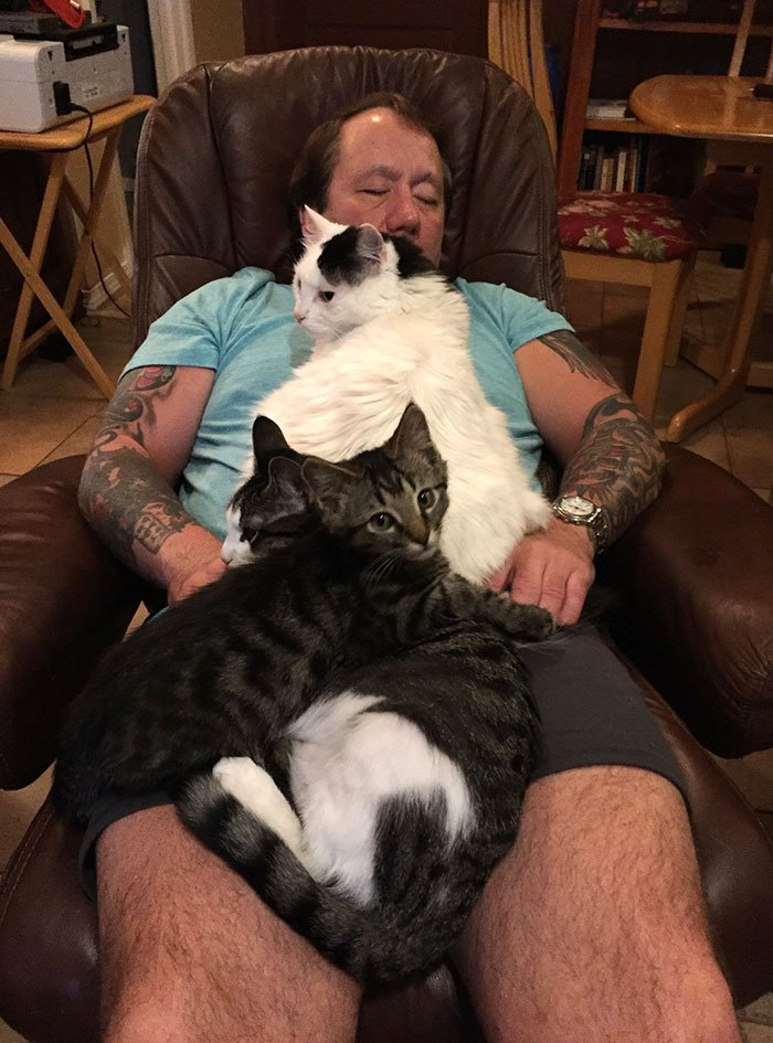 My Dad Has Achieved 100% Cat Relaxation
