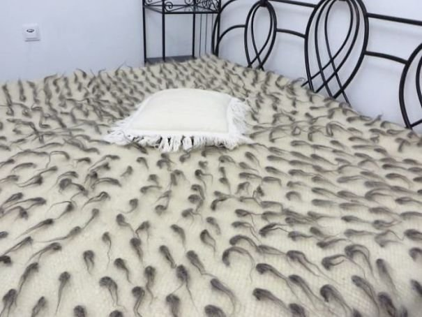 This Nice Bedsheets