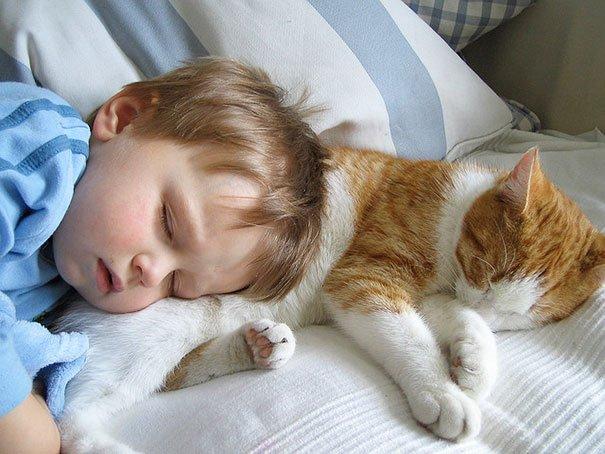 crianças-com-gatos-10