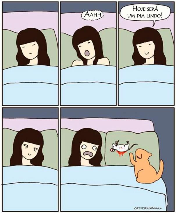 logica-dos-gatos-016