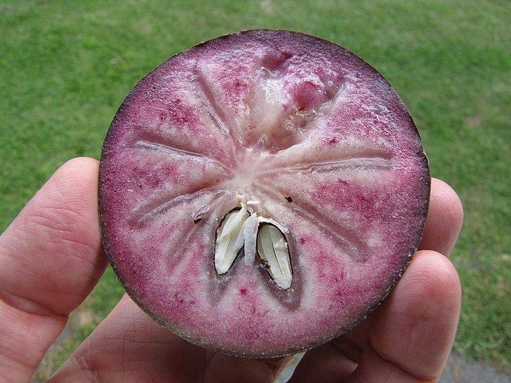 15 Frutas que no parecen hechas por la madre naturaleza