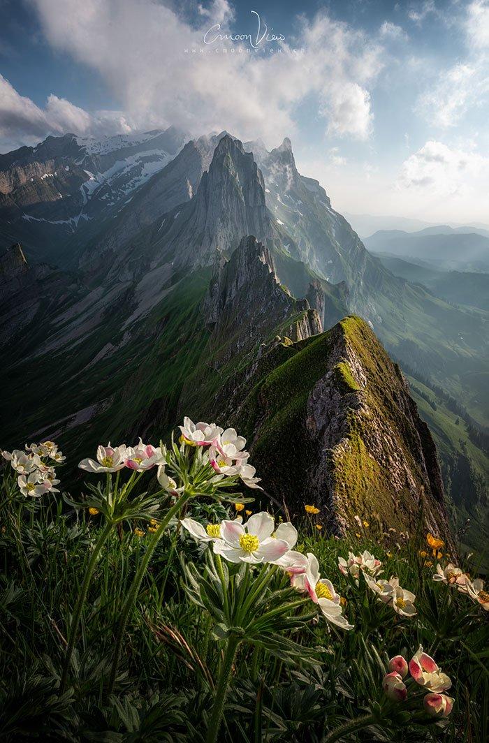 Appenzell, Switzerland, Simone Cmoon