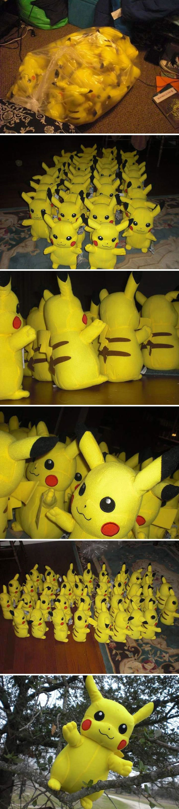 On This Day In 2011, I Found 36 Stuffed Pikachus At A Salvation Army