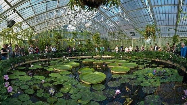 jardins-mais-bonitos-mundo-1