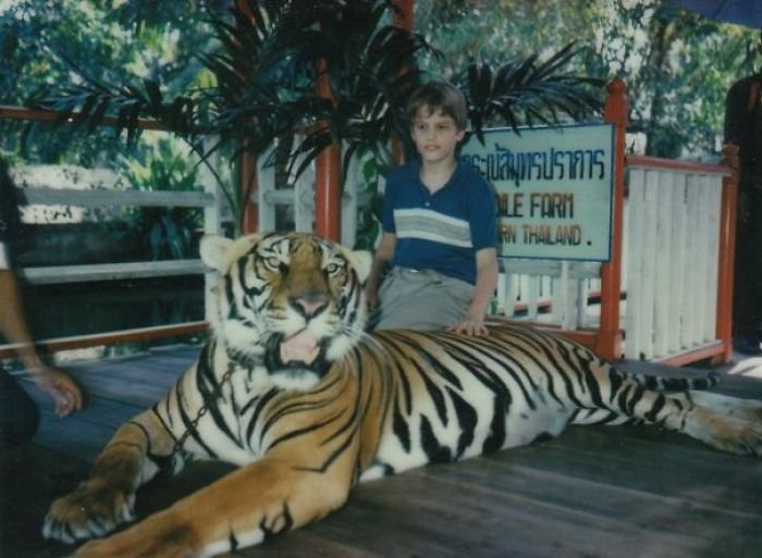 """Just A Photo Of Yours Truly (At 11 Years) Petting A Full Grown Tiger. My Mom Calls It Her """"Bad Parenting Moment"""""""