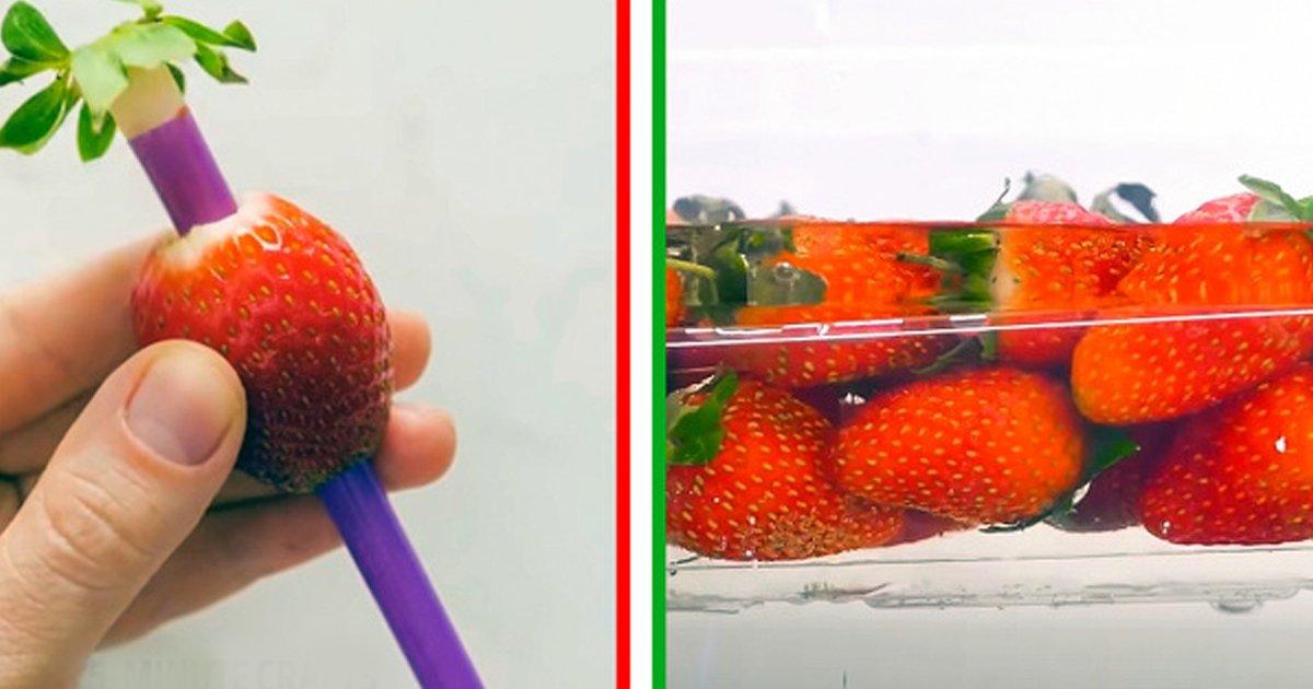2 369.jpg?resize=1200,630 - 15 Tips para conservar frutas y verduras