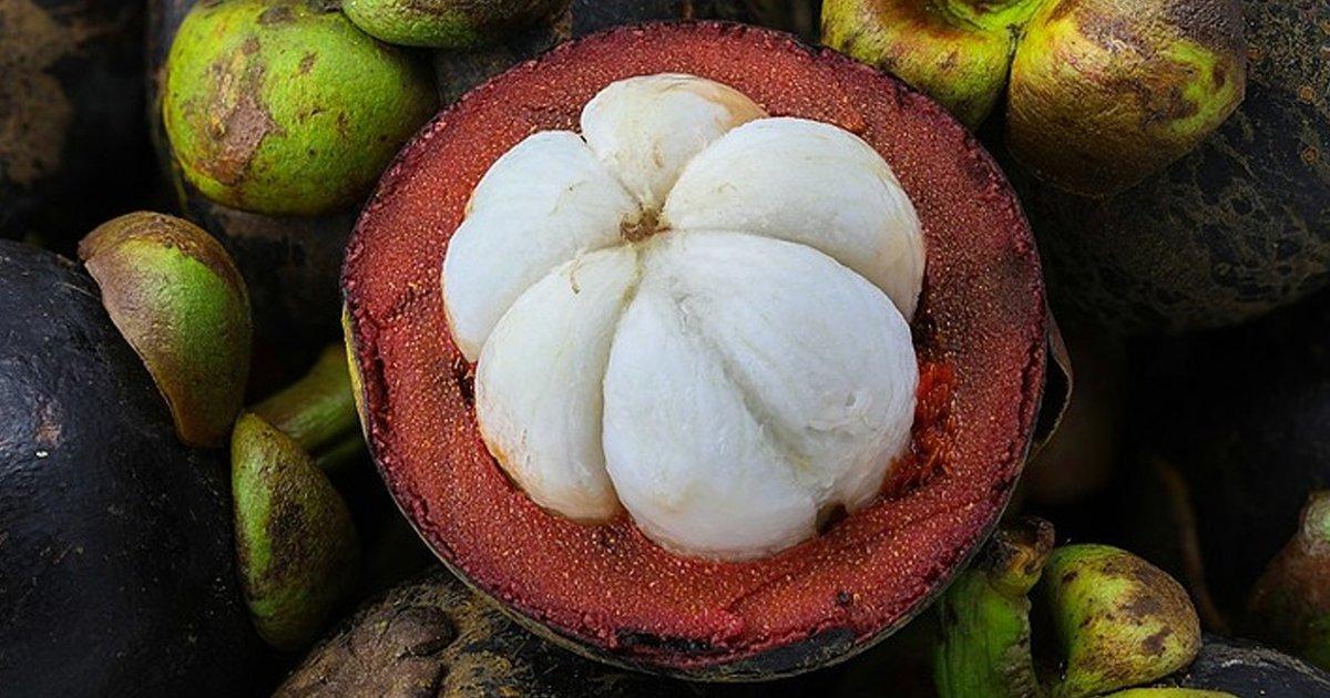 6 103.jpg?resize=1200,630 - Las peculiaridades de estas 9 frutas nos hacen preguntarnos si son de este planeta