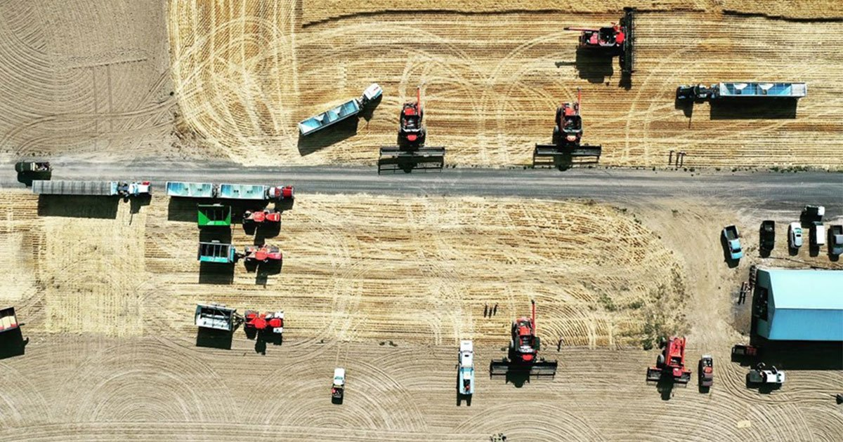 60 farmers harvest wheat crop for neighbor battling stage 4 cancer.jpg?resize=412,232 - Fellow Farmers Harvested Wheat Crop For Their Neighbor Who Is Battling Stage 4 Skin Cancer