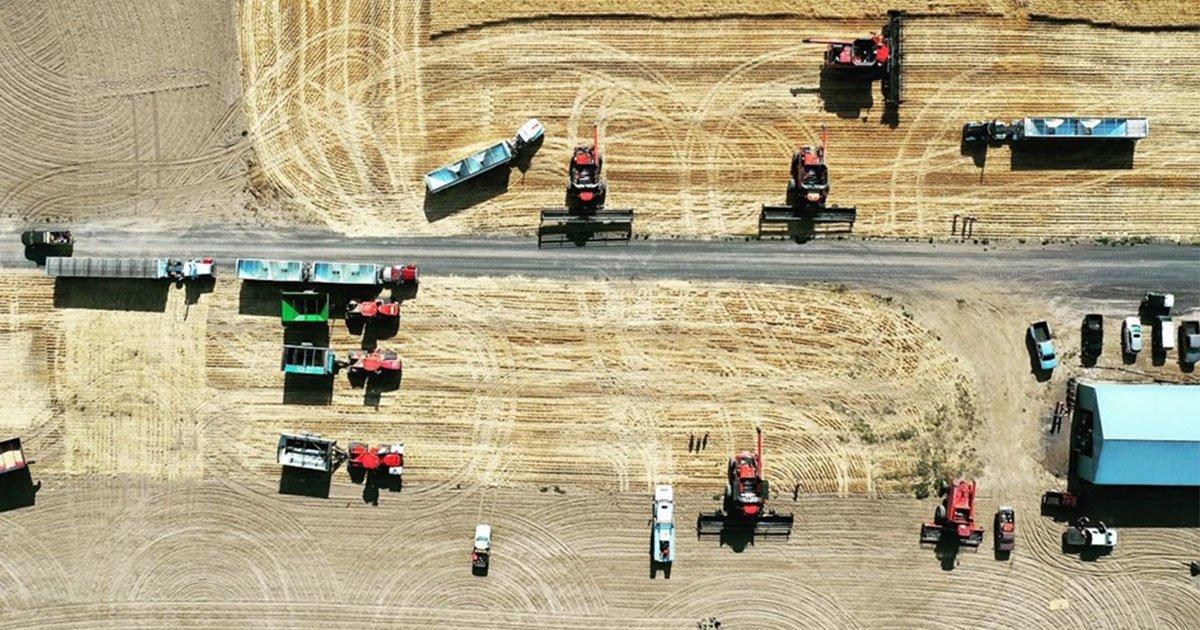 60 farmers harvest wheat crop for neighbor battling stage 4 cancer.jpg?resize=412,232 - Des paysans se sont mobilisés pour récolter le blé de leur voisin qui luttait contre un cancer