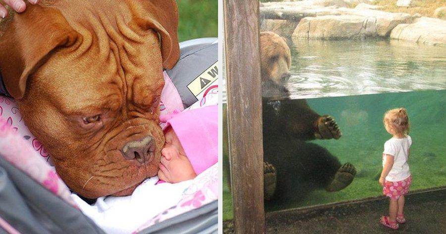 a4 17.jpg?resize=1200,630 - 29 Fotos provando que crianças e animais podem ser melhores amigos