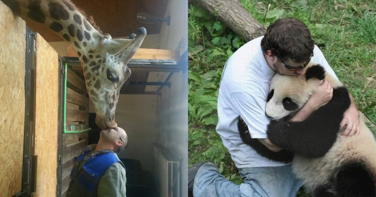 animal love.png?resize=1200,630 - 20+ Touching Animals Photos That Show Unconditional Love