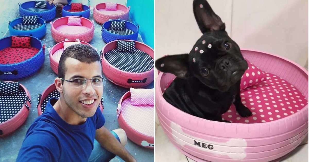 bed10.png?resize=412,232 - Man Collected And Transformed Old Tires Into Adorable Small Beds For Animals