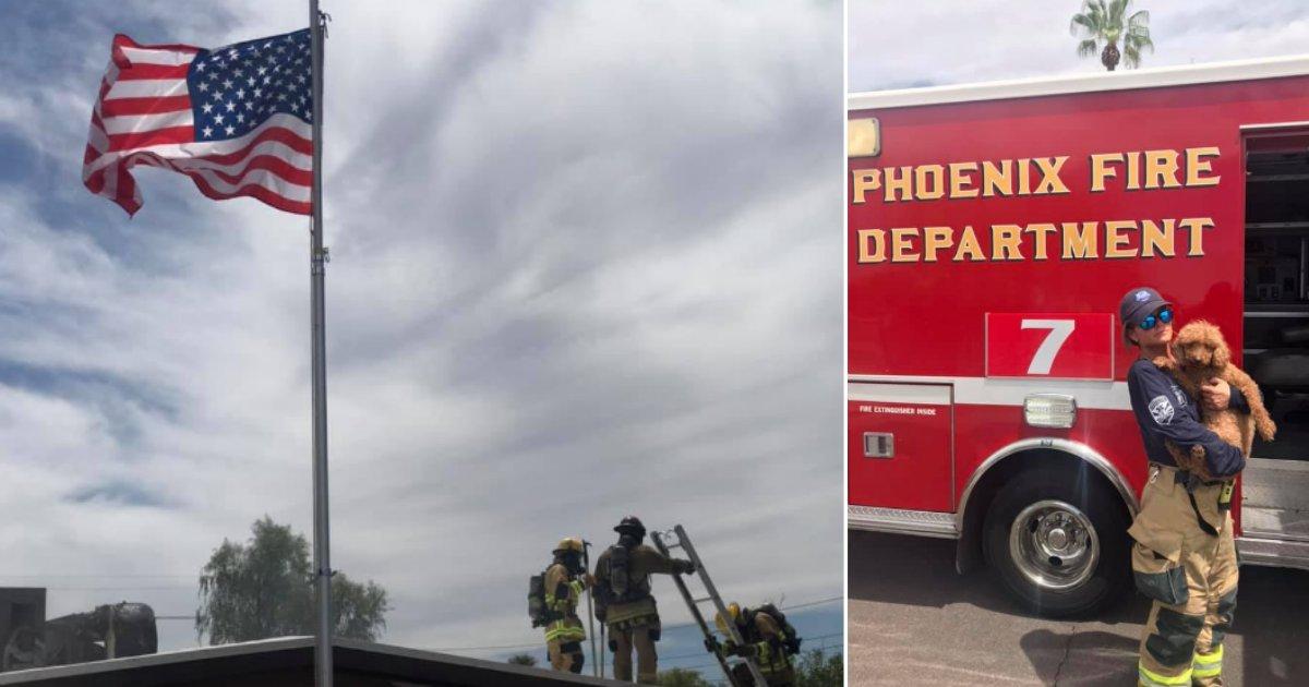 d 1 8.png?resize=412,232 - Un pompier sauve un chien en proie aux flammes