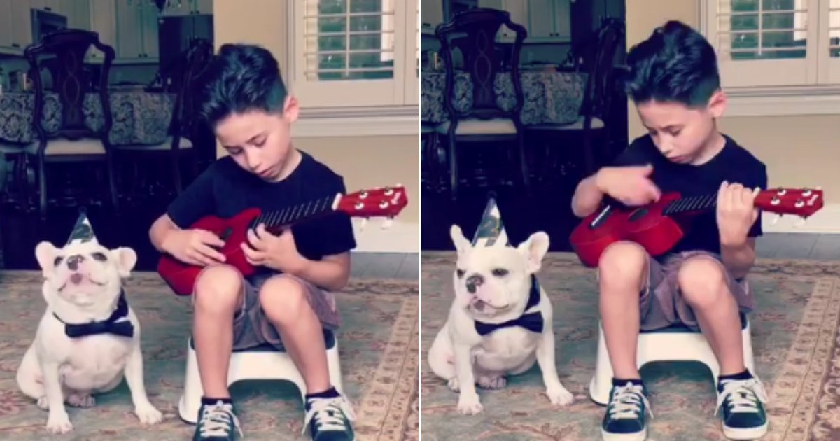 d 2 1.png?resize=412,232 - Little Boy Entertained His Bulldog With Fantastic Music