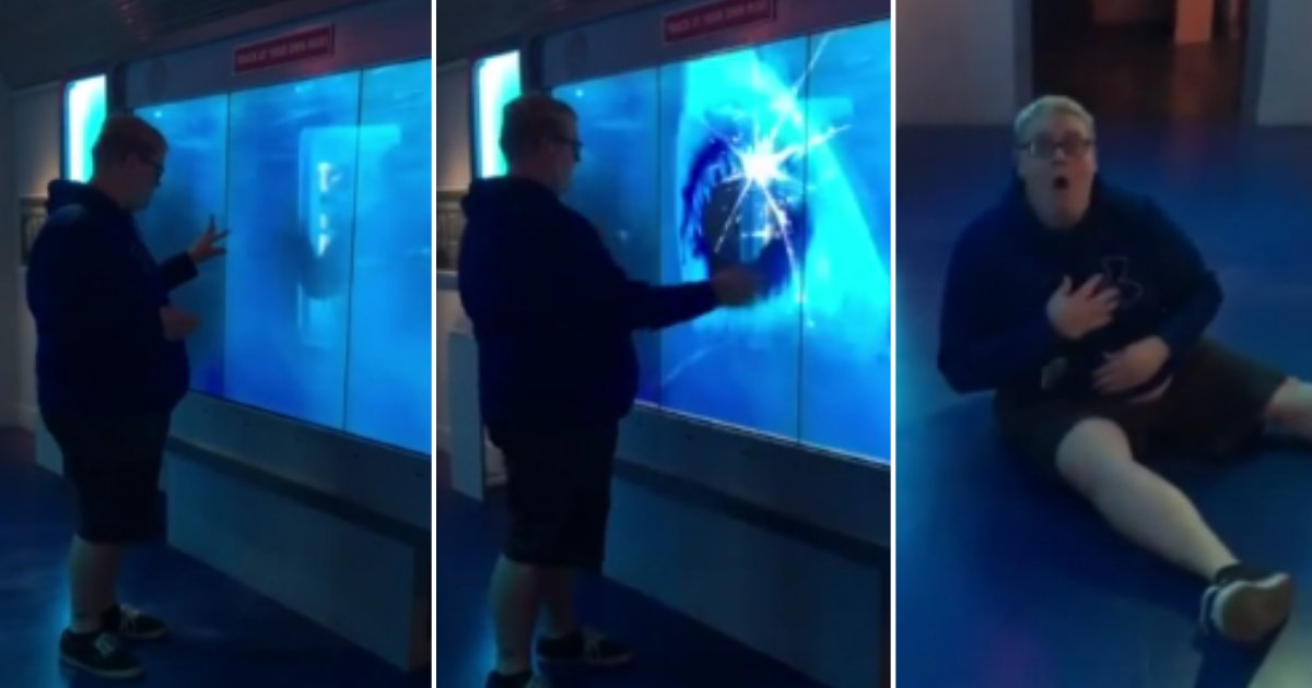 d 3 1 1.png?resize=300,169 - A Man Gets Scared Over A Shark Attack in The Museum