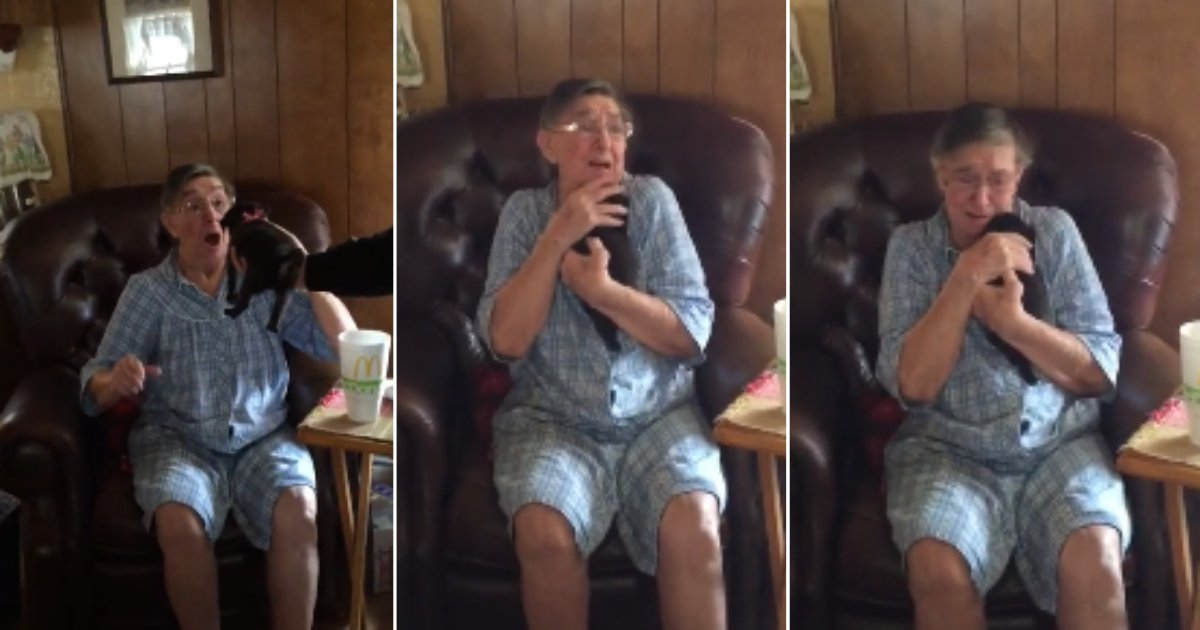 d 5 8.png?resize=412,232 - Grandmother Got a Puppy For A Gift And Her Reaction Was Priceless