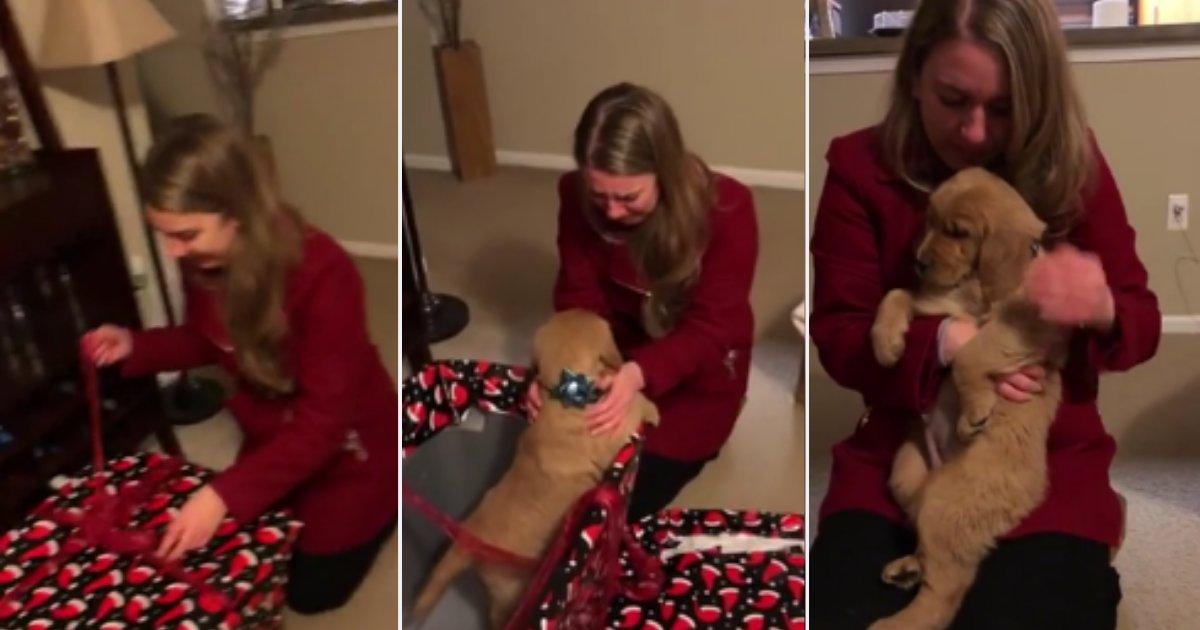 d 6 1.png?resize=300,169 - Une femme fond en larmes après qu'elle ait reçu un petit chiot pour Noël !