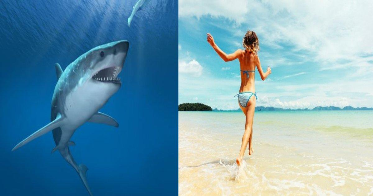e696b0e8a68fe38395e3829ae383ade382b7e38299e382a7e382afe38388 19.png?resize=1200,630 - 21歳の女性、サメに四肢をくいちぎられ死亡。その恐ろしいサメの実態とは…