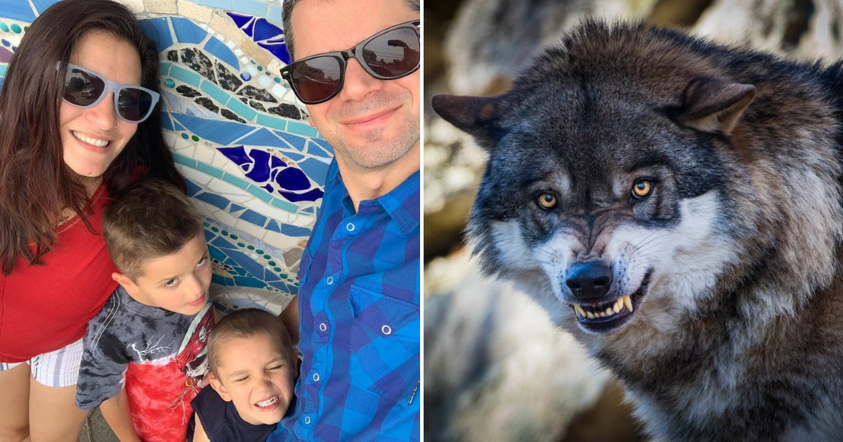 family3.png?resize=412,232 - Wife Recalls Horrifying Moment Husband Threw His Body Over Family To Save Them From Wolf