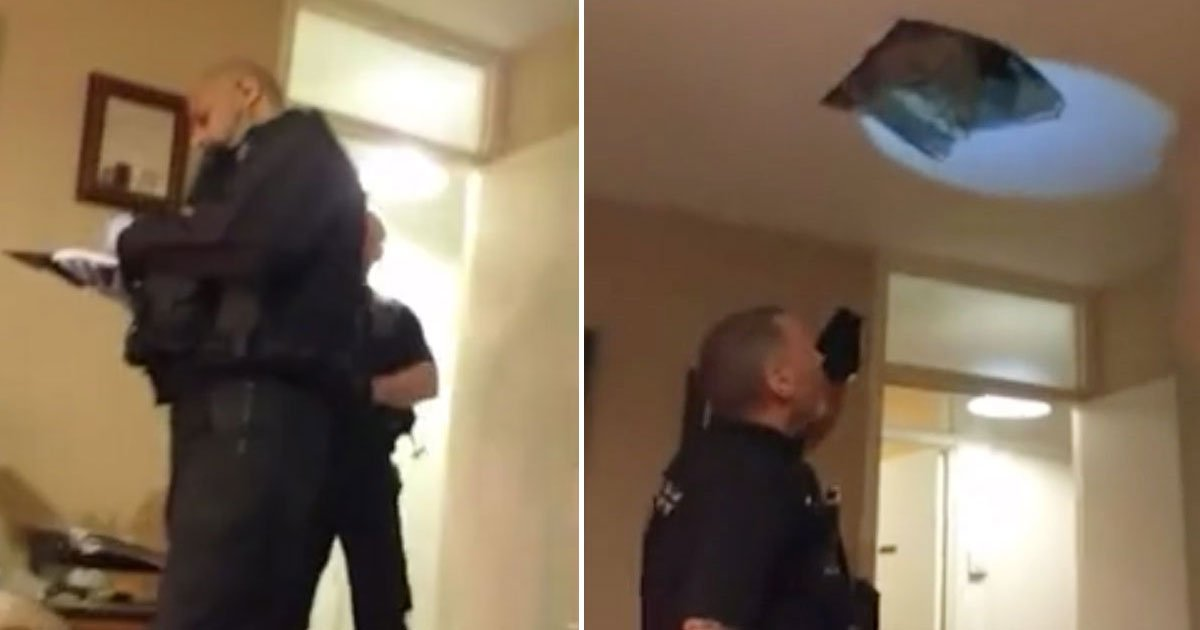 man falls ceiling police.jpg?resize=412,232 - Man - Who Was Hiding From Police In An Attic - Fell Through The Ceiling
