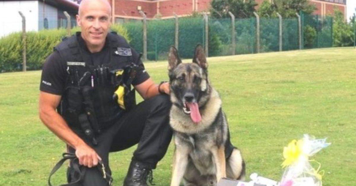s 3.png?resize=412,232 - A Man Jailed After Harming Beloved Police Dog