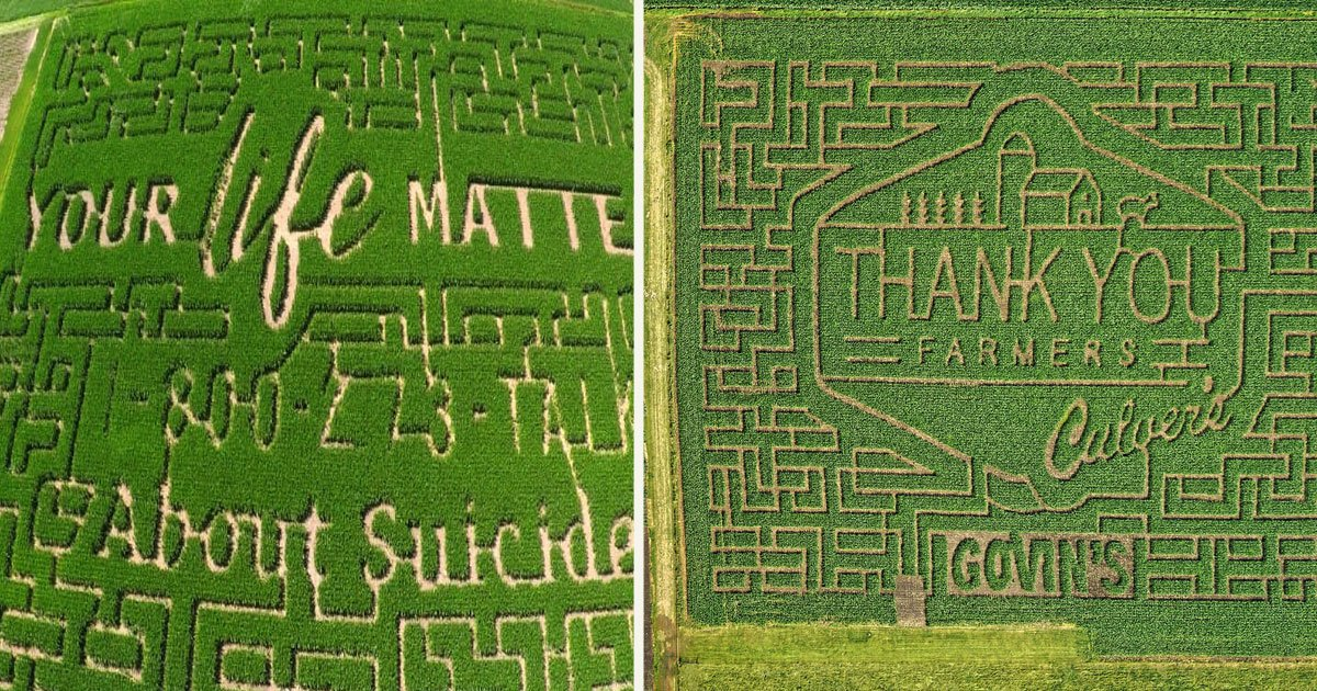 untitled 1 43.jpg?resize=1200,630 - Farm Owners Turned Their Corn Maze Into A Billboard With A Special Message About Suicide Prevention