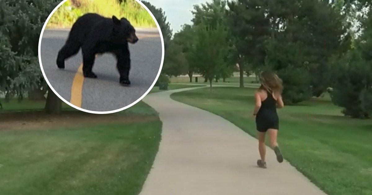 untitled design 10.png?resize=366,290 - Un ours noir a été filmé en train de charger une femme sur un sentier de course populaire