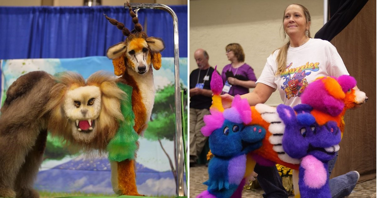 untitled design 15.png?resize=412,232 - Pet Groomers Display Their Dogs And Compete For The Title Of The Most Creative Design